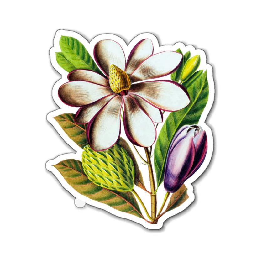 Floral And Botanical Art Home Magnets