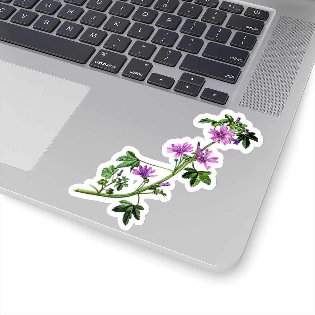 Common Mallow vinyl sticker