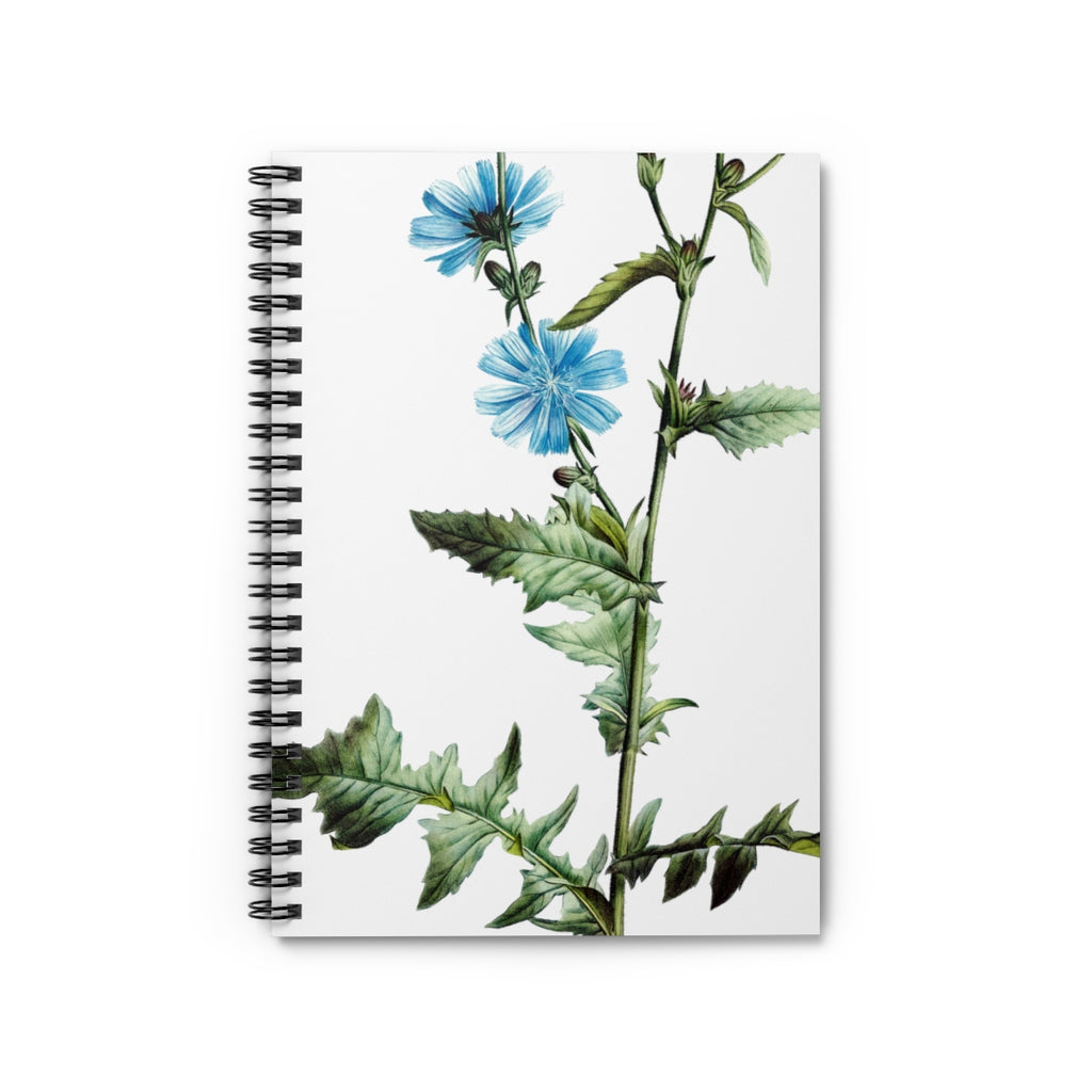 Chicory Spiral Notebook - Ruled Line