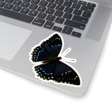 Butterfly | Nymphalis numenes | Stickers