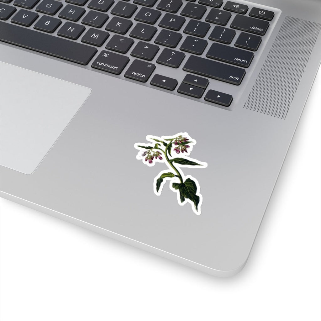 Comfrey stickers