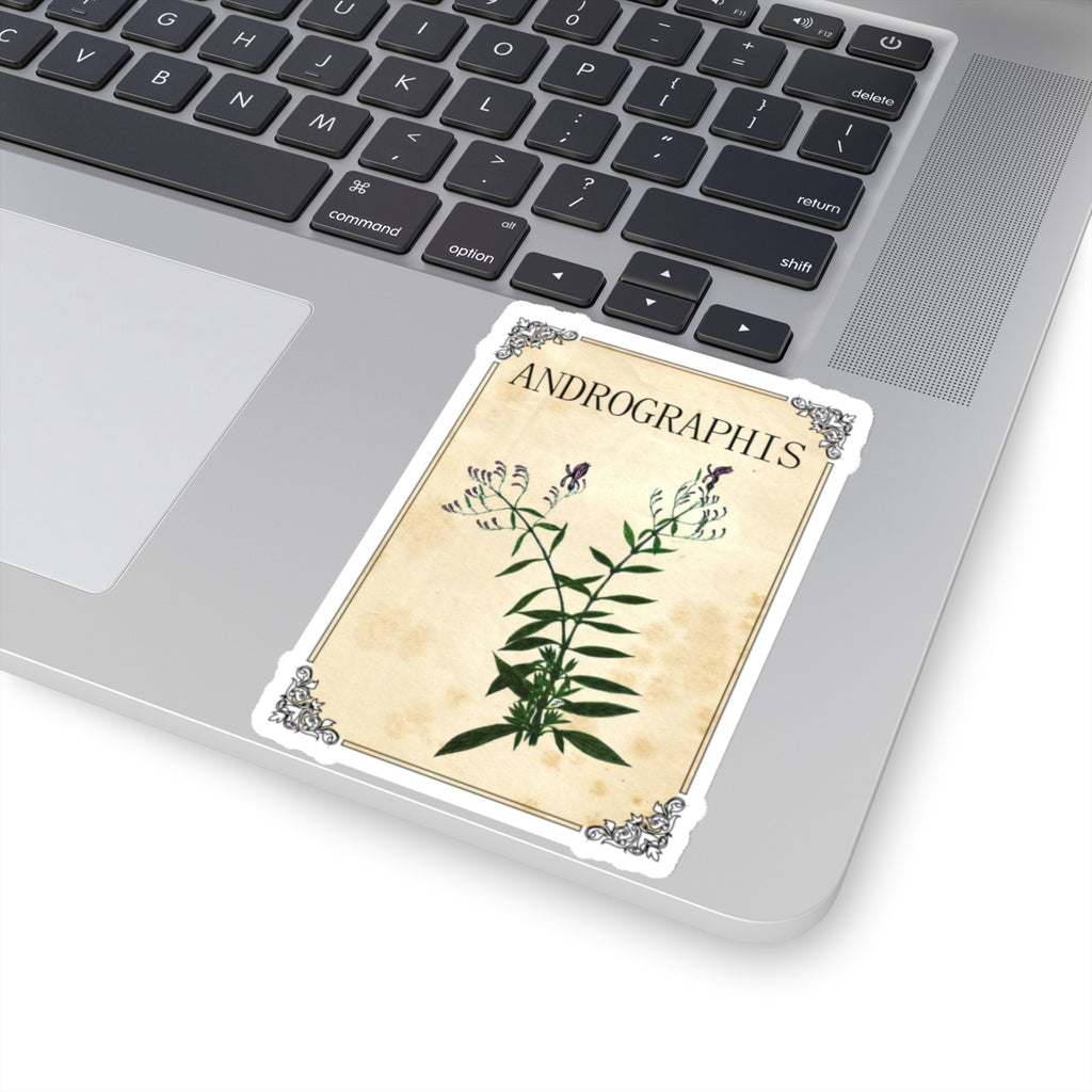 Andrographis Herb Label Stickers - Vintage Herbs & Spice Labels