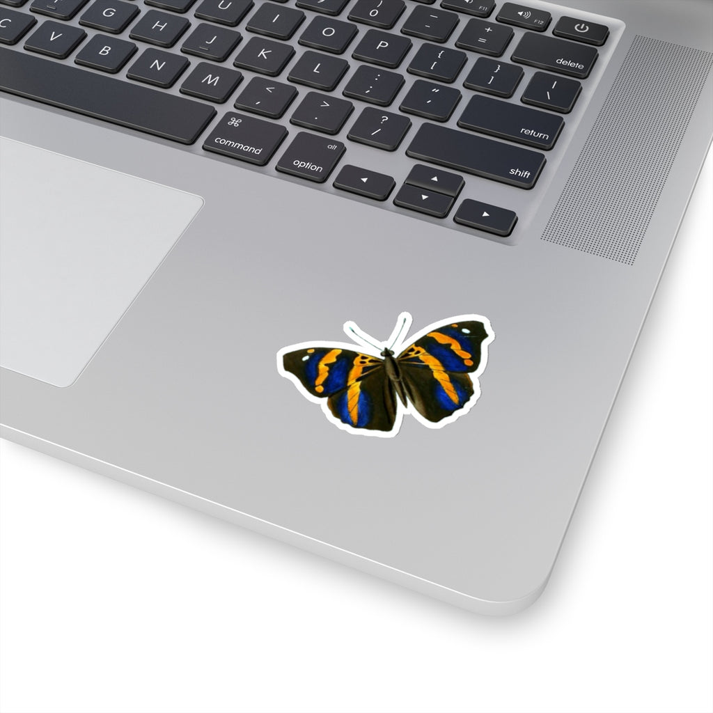 Butterfly | Epiphile epicaste | Stickers