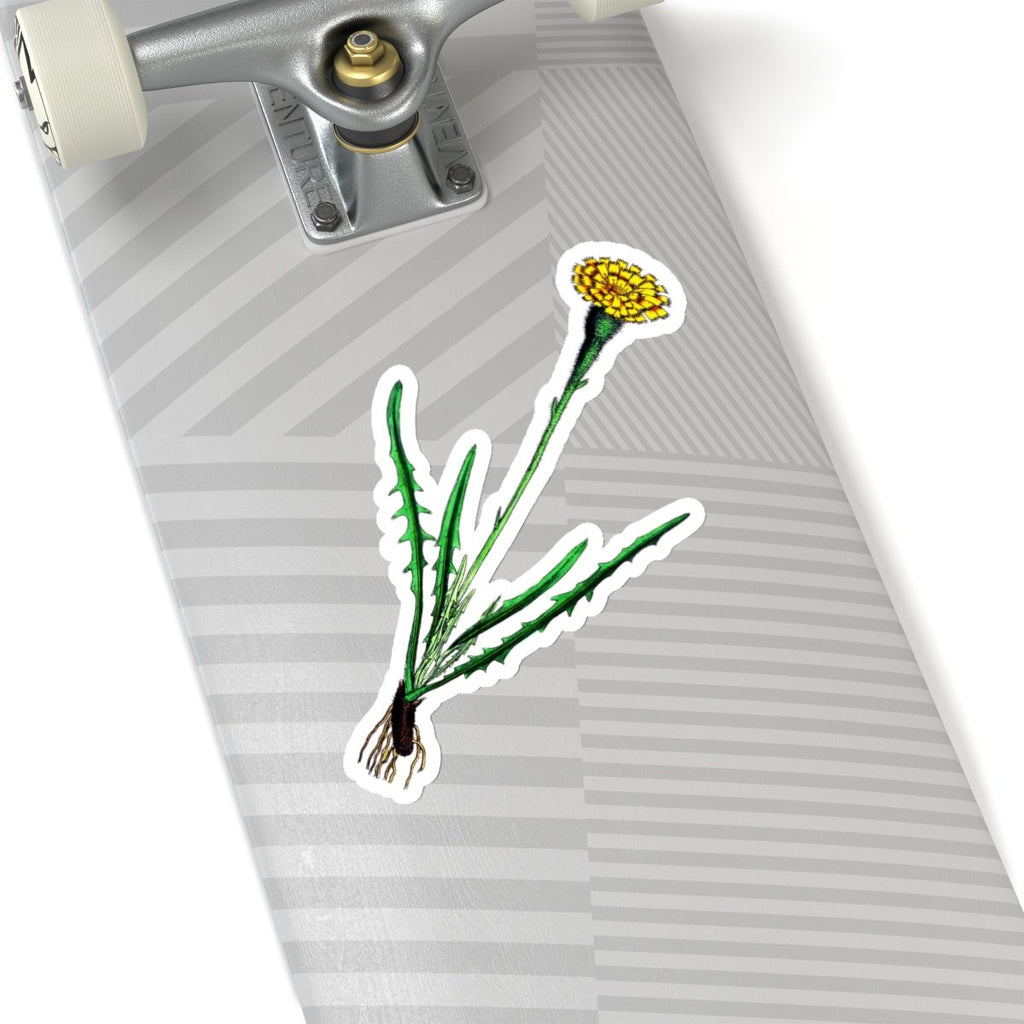 Autumn Hawkbit vinyl stickers