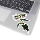 Comfrey vinyl stickers