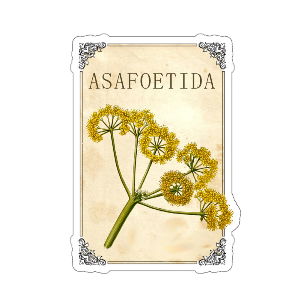 Asafoetida Label Stickers - Herb and Spice Stickers