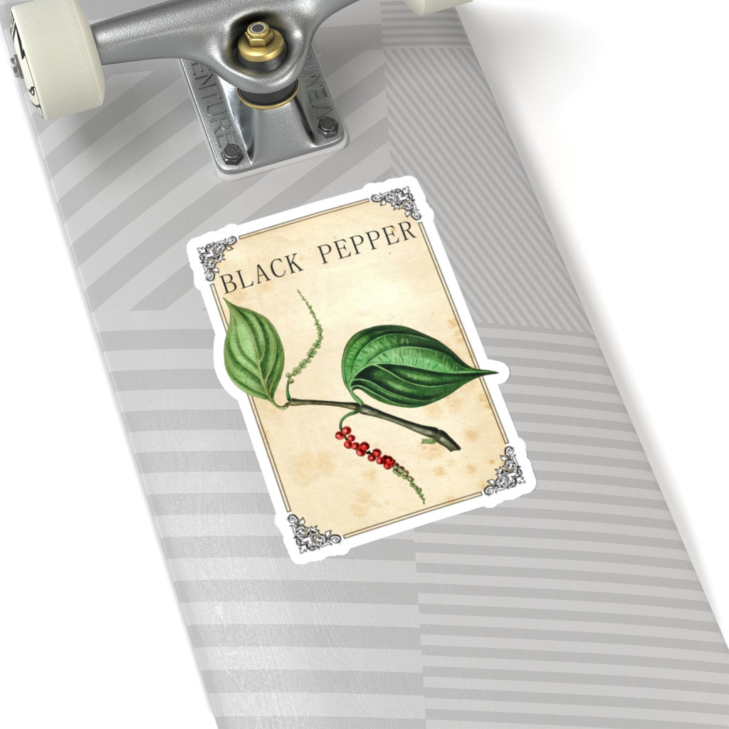 Black Pepper Spice Label Stickers - Vintage Herb & Spice Labels