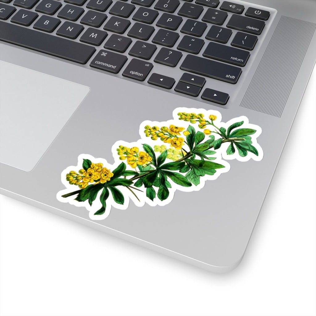 Barberry die cut stickers