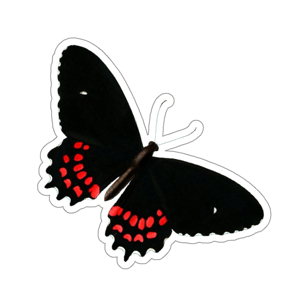 Butterfly Papilio dares Stickers