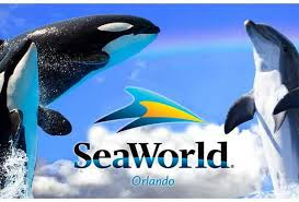 Sea World Field Trip Student Ticket (Annual Pass Holder)