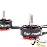 RSII 2306 Race Spec - Brushless Motor (4-6S)