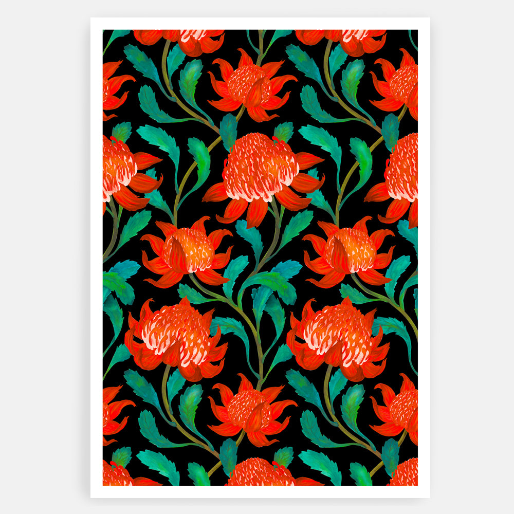 ART PRINT - MOONLIGHT WARATAH