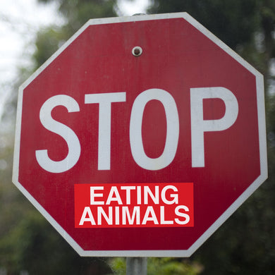Stop Eating Animals Sticker