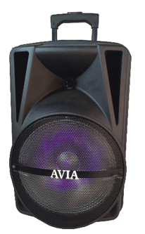 "Avia 17-1211P - 12"" Rechargeable Bluetooth Speaker with Microphone and LED Lights"
