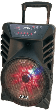 "Avia 1511A - 15"" Speakers with Multimedia Party Speaker"