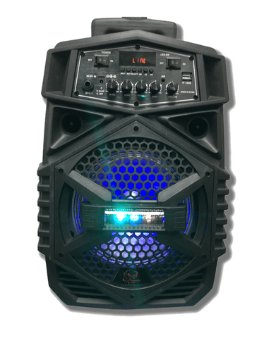 "iPhoenix 308 - 8"" Portable Speaker"