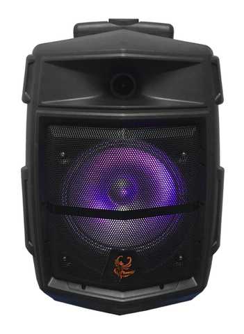"iPhoenix 309 - 8"" Portable Rechargeable Party Speaker"