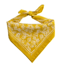 Load image into Gallery viewer, Rosehips Bandana