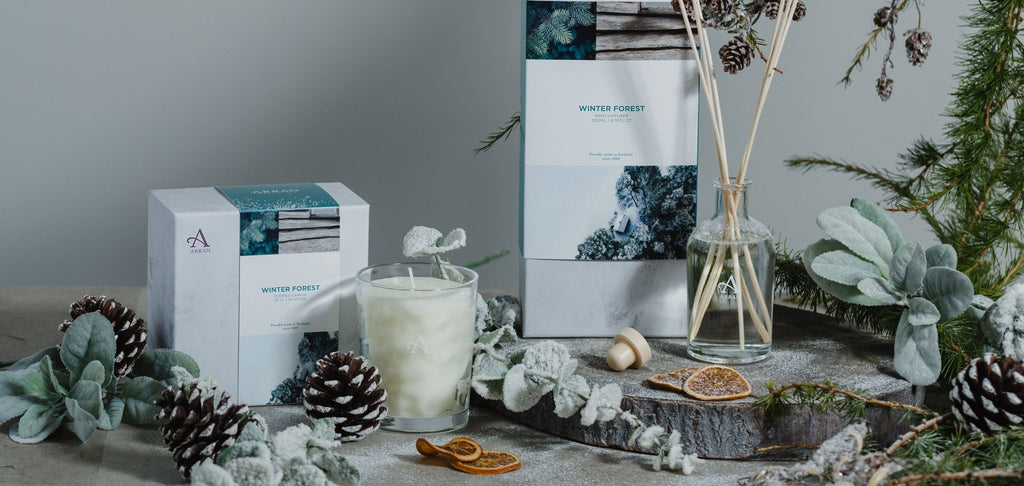 Winter forest candle and diffuser with mandarin and pinecones in background