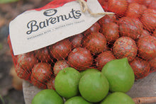 Load image into Gallery viewer, Pre-order - Barenuts in Shell (1kg)