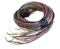 LINK - Loom B (2.5m) - All wireIn ECUs - Not ATOM