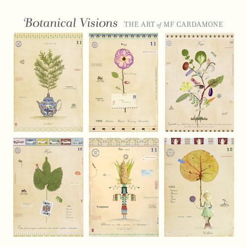 Botanical Visions The Art of MF Cardamone