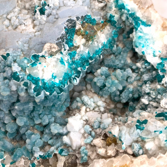 Dioptase with Druzy Natural Raw Crystal