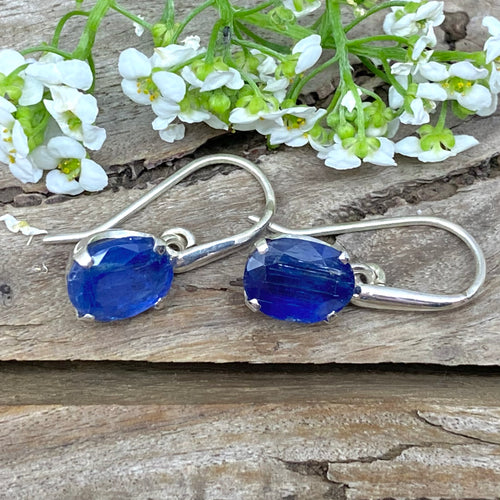Oval Kyanite Earrings