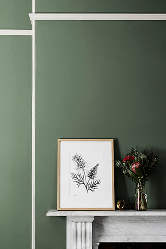 Grevillea Limited Edition Print