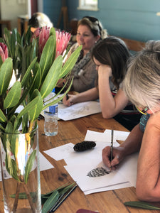 Gift Card- 5 Week Term Botanical Drawing Workshop
