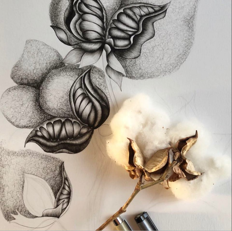 Inprogess shot of the Cotton Drawing