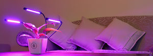 led-grow-light-for-hydroponic-indoor-plants