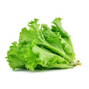 Cos Lettuce Seeds-Seeds-Urban Plant Growers-