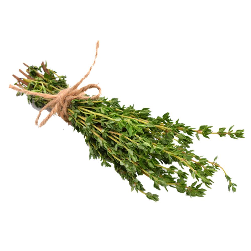 Summer Thyme-Seeds-Urban Plant Growers-