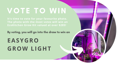 Win an EasyGro by voting for your favourite photo