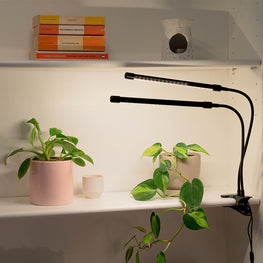 white full spectrum hydroponic lights growing plants indoors