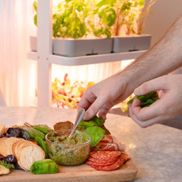 Person adding fresh basil to a grazing platter with herb garden in background