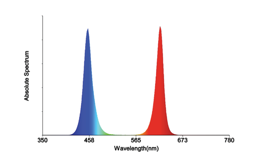 Light spectrum of blue and red wavelengths of light used in grow lights