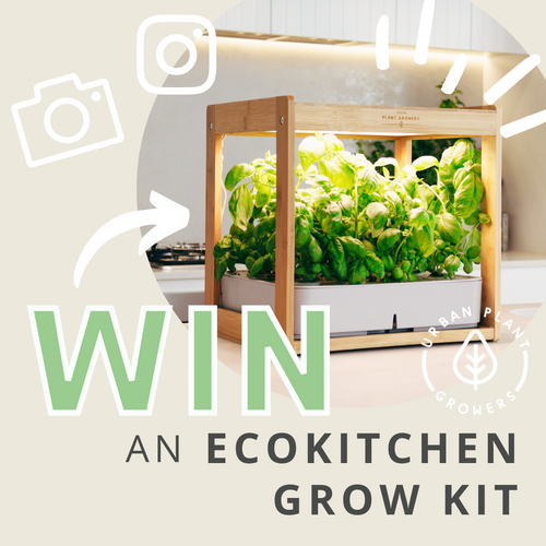 Win an EcoKitchen by taking a photo