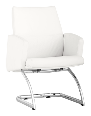 Bain  Conference Chair
