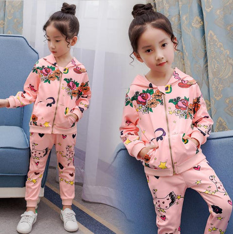 Girls Clothing Sets Autumn Kids Clothes Suit Tracksuit Baby Set Children Sports Outfits 3 4 5Ye zipper Jacket 2 Pieces costume
