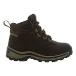 Timberland Waterproof Lace Hiker Boot  Mens Style : 66861