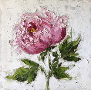 """Pink Peony"" 20x20x1.5"" Oil and Graphite on Canvas"