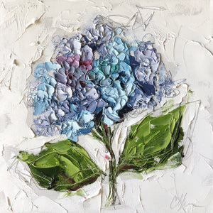 """Hydrangea XV"" 12x12 Oil/Graphite on Canvas"