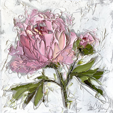 """Peony II"" 12x12 Oil/Graphite on Canvas"