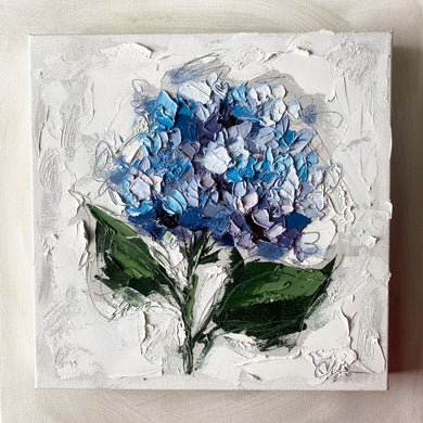 """French Hydrangea II"" 12x12 Oil on Canvas"