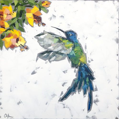 """Hummingbird no. 2"" 20x20"