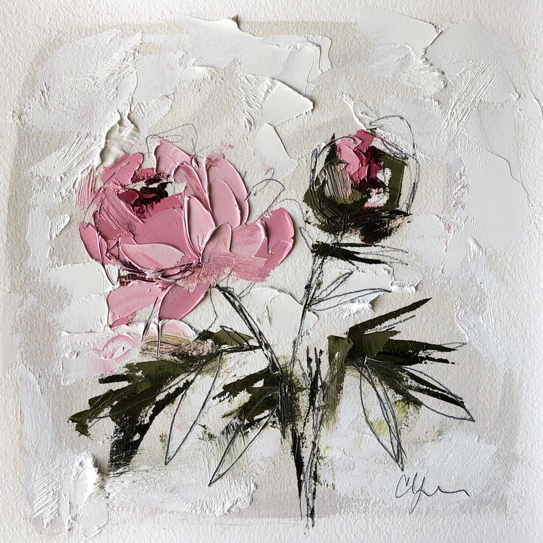 """PEONY VIGNETTE XXXI"" 14x14 (8x8) Oil/Graphite on Paper"