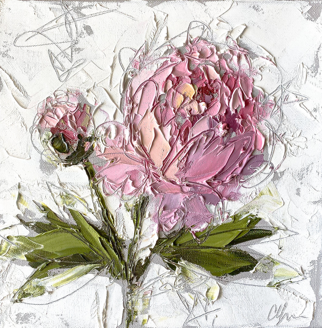 """Peony III"" 12x12 Oil/Graphite on Canvas"