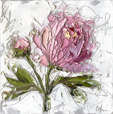 """Peony IV"" 12x12 Oil/Graphite on Canvas"